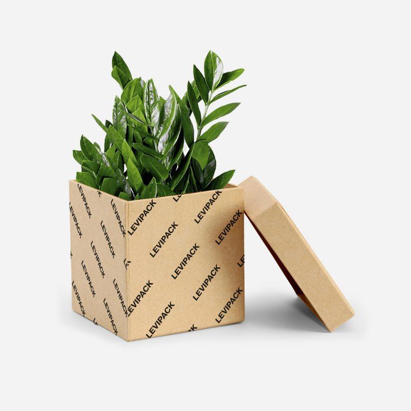 Pflanzenkarton - Nachhaltigkeit